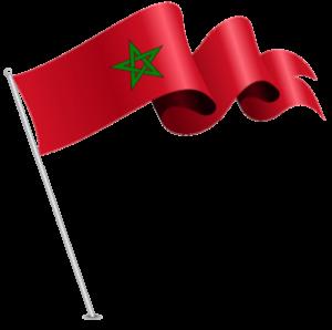 Crème de Goji - commandez maintenant sur le site officiel marocain.