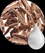 Princess Hair: les composants naturels du masque pour la repousse des cheveux