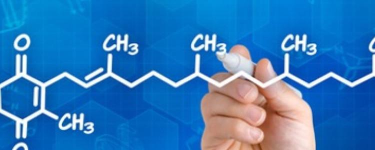 Pourquoi la vitamine K est-elle si importante?