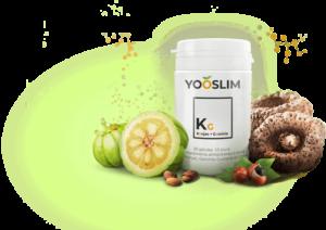 Tout ce que vous devez savoir sur YooSlim.
